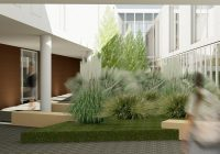 rain-garden-render