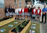 ecology_garden