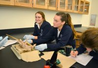 pig_dissection_0054
