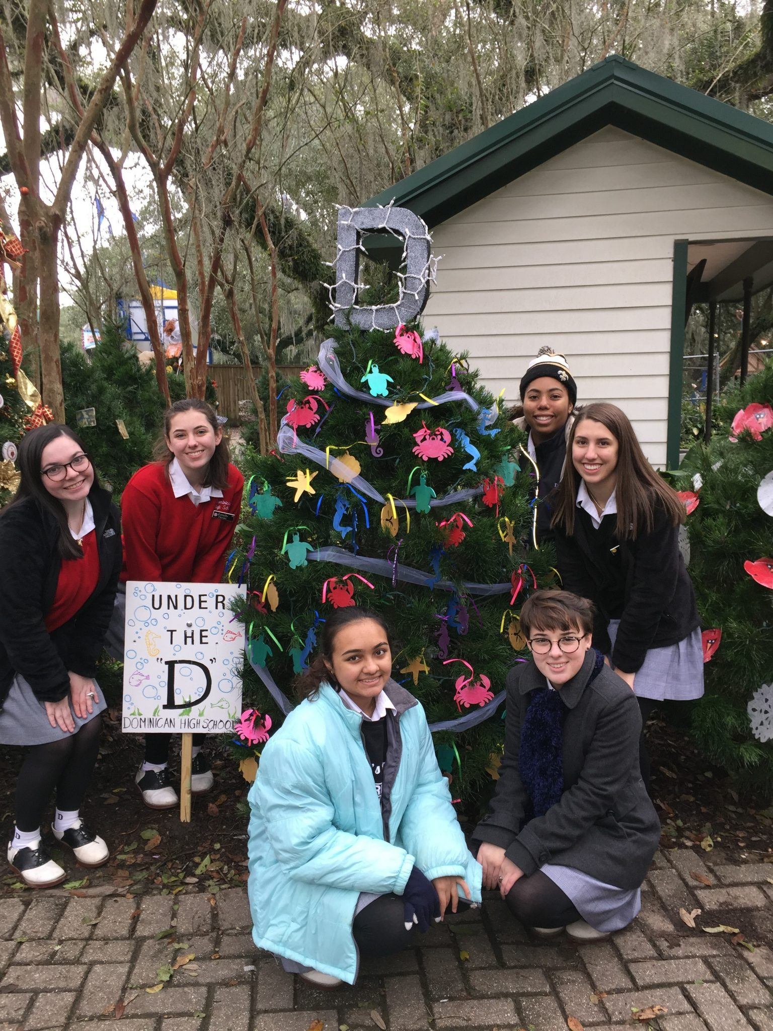 Christmas Under The Oaks.Under The D Dominican Christmas Tree St Mary S